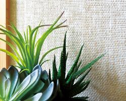 紙の繊維を編み込んだエコクロス。編み込みの立体感で調湿効果にすぐれ、室内を快適に保ちます。 株式会社未来住建
