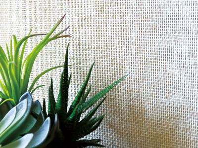 紙の繊維を編み込んだエコクロスです。編み込みがつくる立体感が調湿効果を発揮し、室内を快適な環境に保ちます。|株式会社未来住建